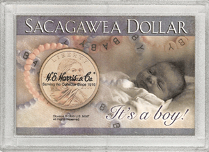 It%27s a Boy! Sacagawea HE Harris 2x3 Frosty Case 2x3 It%27s a Boy! Sacagawea HE Harris 2x3 Frosty Case, HE Harris & Co, 1652