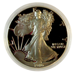 Guardhouse Silver Eagle Size Acrylic Coin Capsule 40.6 mm